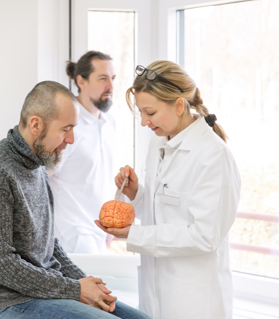 A doctor at Broadview Health Centre using a model brain to explain Multiple Sclerosis to a patient