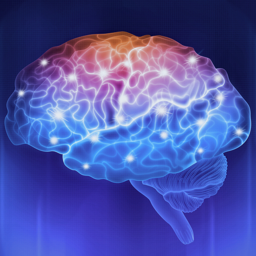 animation of brain for chiropractic neurology