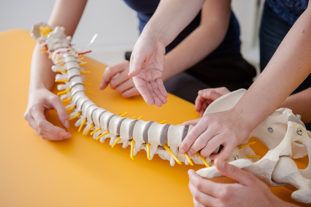 display of treatment for musculoskeletal disorder