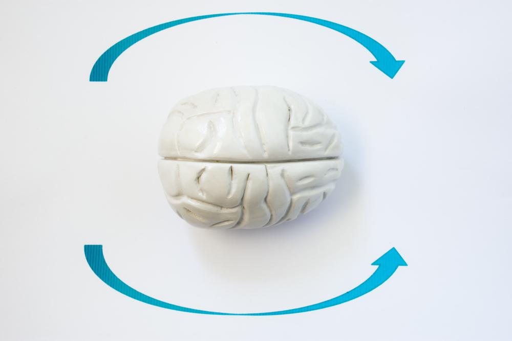 3d rendering of brain